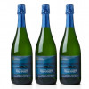 Iron Horse Ocean Reserve Sparkling (3) for $94.99