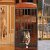 Pet Gate – Your Choice – 3 Styles for $24.99