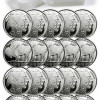 Roll of 20 – 2014 American Indian Buffalo 1 Troy Oz .999 Silver Rounds SKU30312