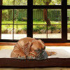 PawMate Orthopedic Pet Beds for $19.99